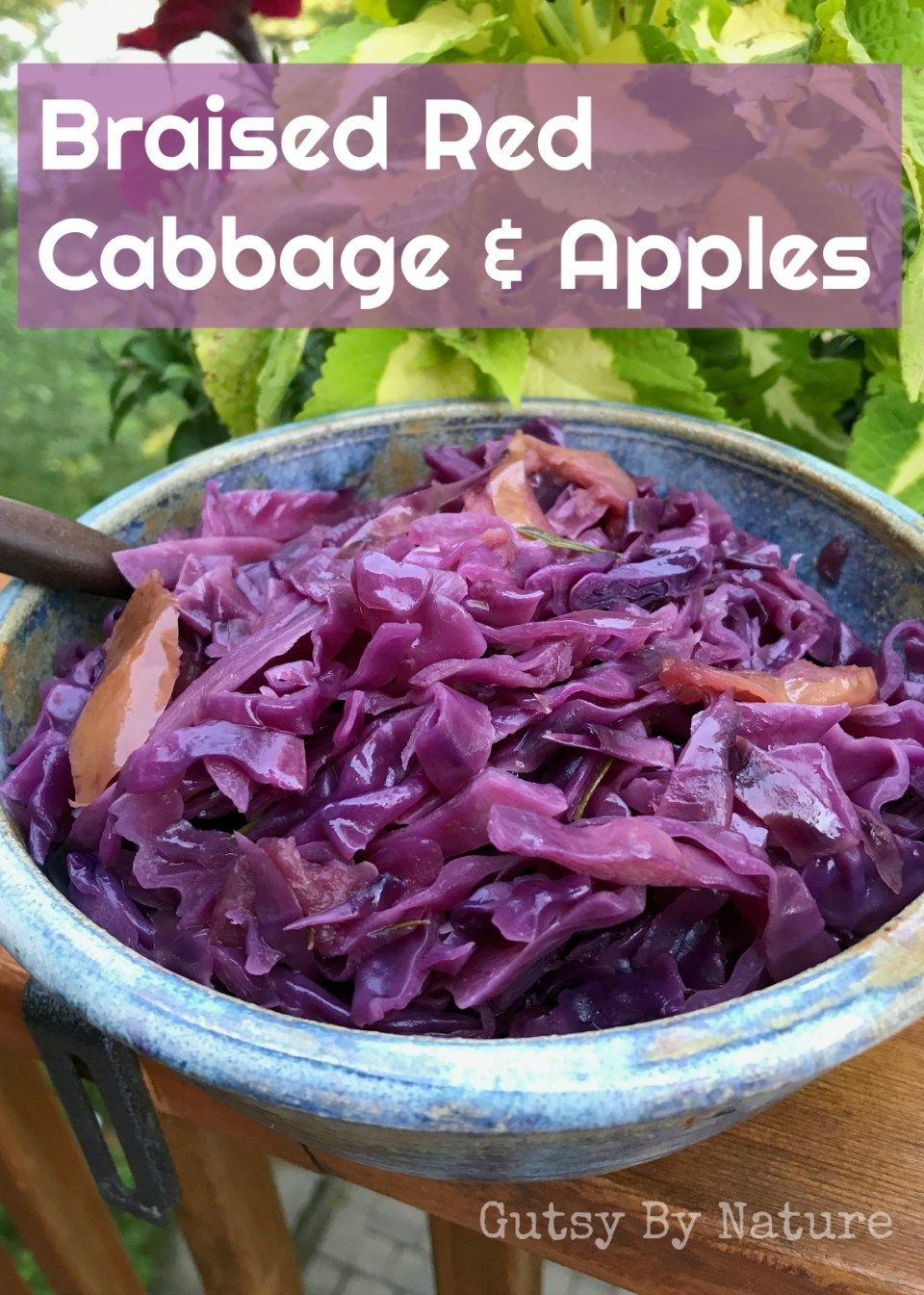 Braised Red Cabbage Apples Aip Scd
