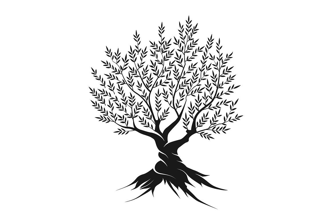 Vector Olive Tree Silhouette Tree Silhouette Tree Graphic Illustration