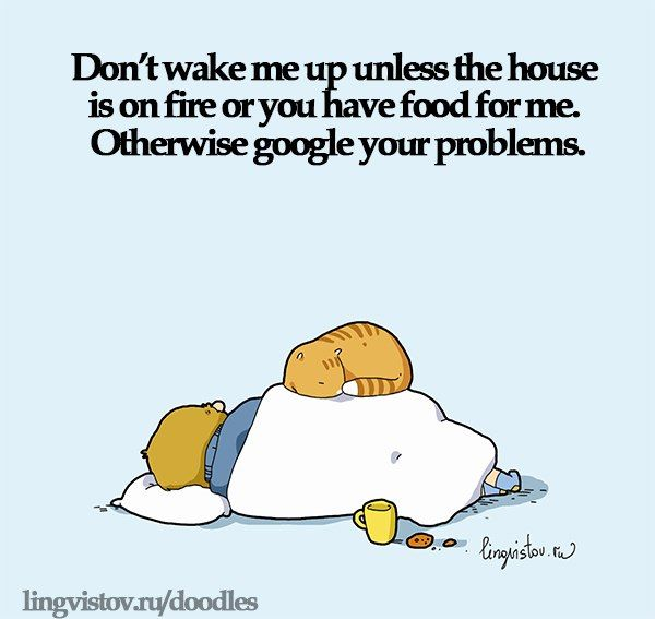 Funny Wake Up Quotes Funny Picture Wake Up Food Fire Google