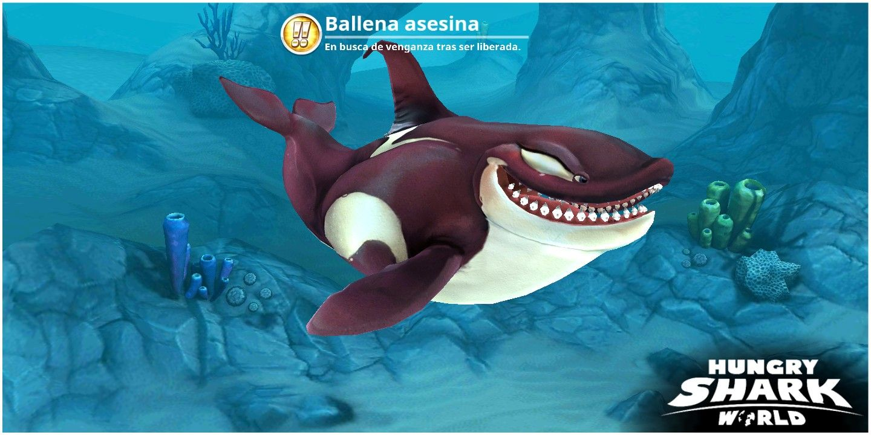Pin De Paulo Rojo Em Tiburones