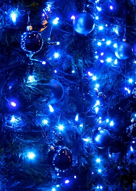 Is the tree itself blue, too, or are the blue lights creating all the blue?  Gorgeous intensity of color. - Blue Christmas & Winter Pinterest Blue Christmas, Blue And