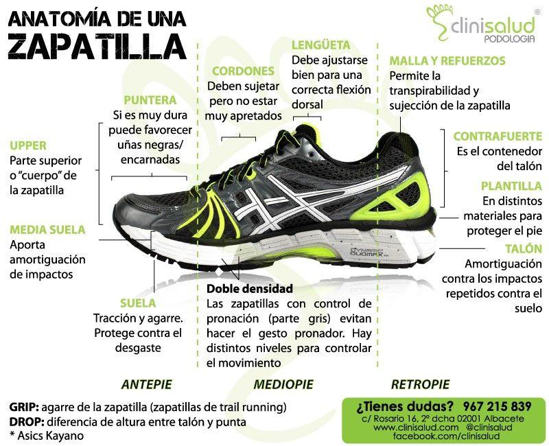 Anatomia de una zapatilla | Male Anatomy for Draw | Pinterest ...
