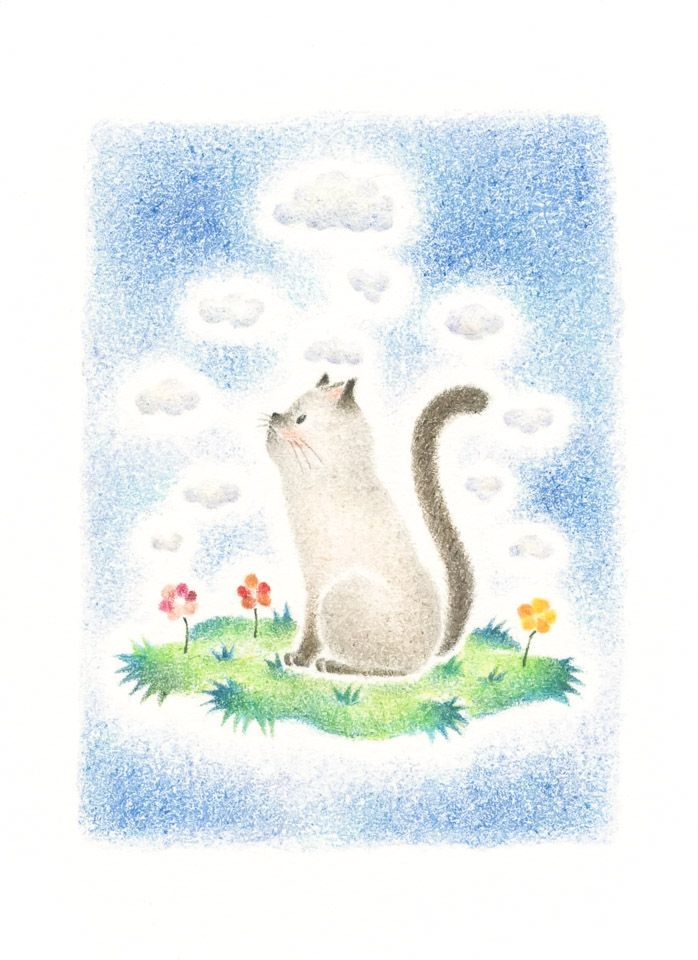 Cat Mero S Curiosity Rili Picture Book Illustration Design