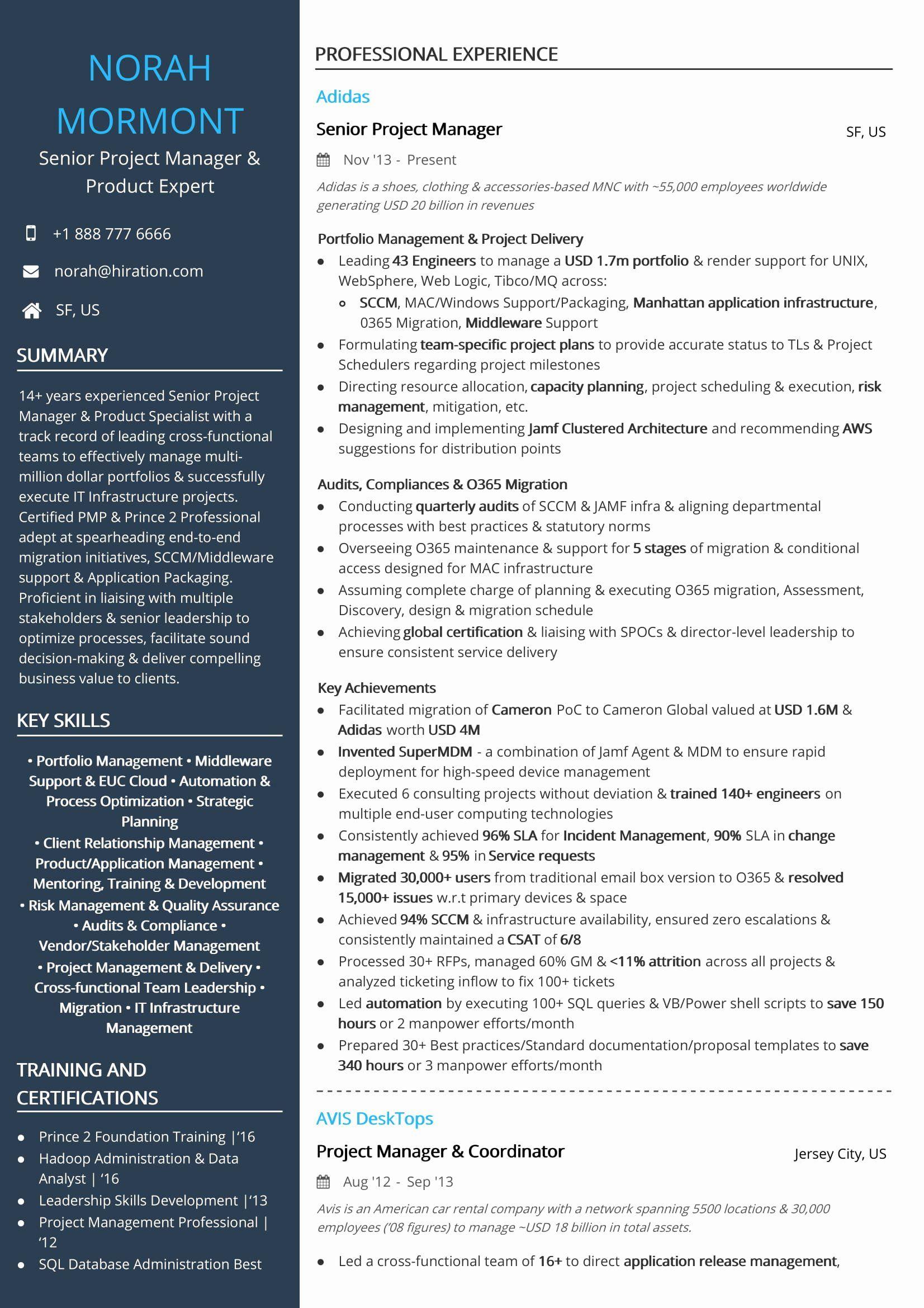 20 Google Product Manager Resume Takethisjoborshoveit Com Project Manager Resume Medical Assistant Resume Manager Resume