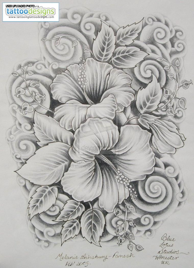 Hibiscus Tattoos Designs For Women Image Tattooing Tattoo Designs Free Download Tattoo 40109 Hibiscus Tattoos Dibujos De Flores Tatuajes De Flore