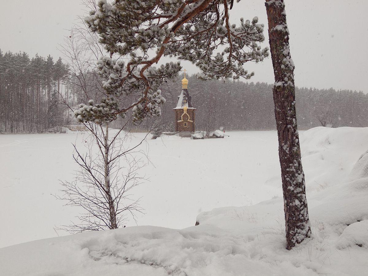http://peavey.35photo.ru/photo_1121037/