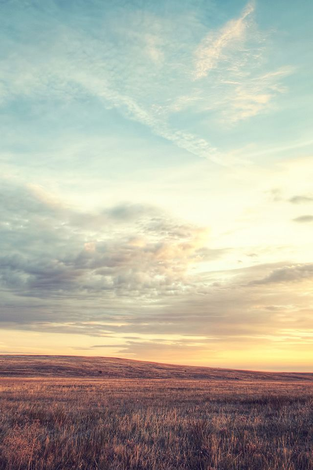Nature Wild Grassland Skyline iPhone 4s wallpaper