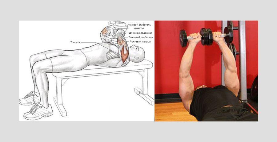 Жим Тэйта - мощное упражнение для усиления трицепса, прорабатывает все три пуска, а особенно в район...