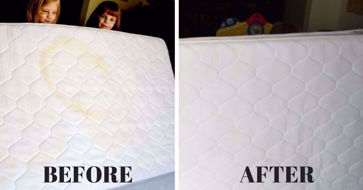 Mattress Protector Potty Training In 2020 Remove Stains From