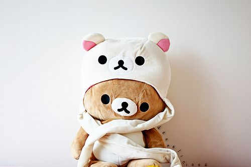 Image result for cute rilakkuma