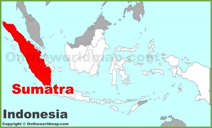 Sumatra location on the indonesia map maps pinterest sumatra location on the indonesia map gumiabroncs Gallery