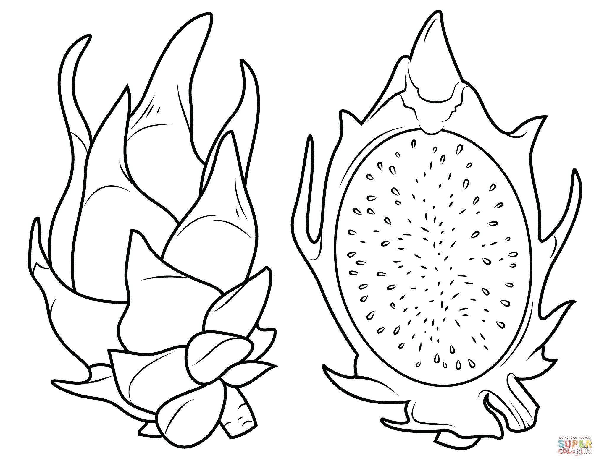 Jackfruit Coloring Pages Free Desenhos Para Colorir Frutas Para