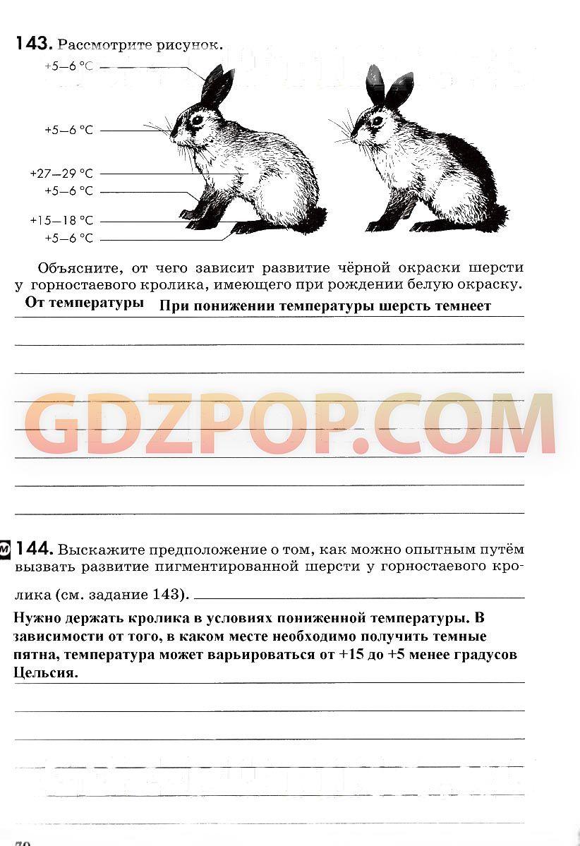 Гдз по математике 9 класса м. Н. Перова | flourunes | pinterest.