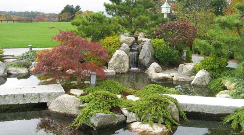 Bonsai An Einem Teich Mit Wasserfall Pflanzen · Zen GardensWater  GardensJapanese ...