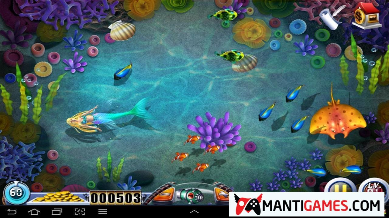 Best Fish Games You Can Play Online and Free No Download