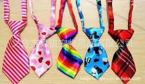 Resultado de imagem para gravatas pet