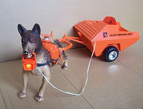 Duke The Rescue Dog Rescue Dogs Dog Toys Dogs