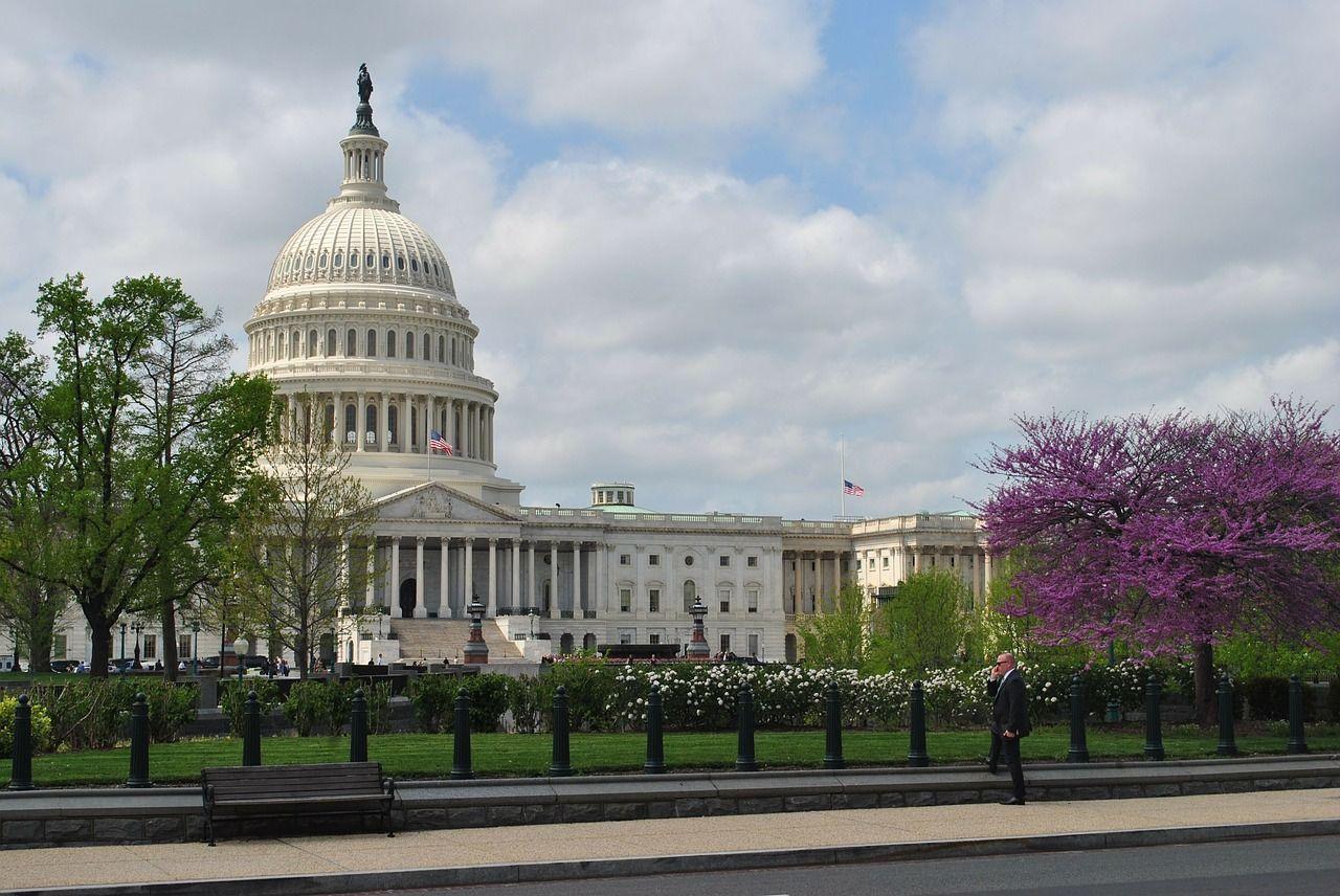 Washington DC and its beauty! Washington dc, Washington