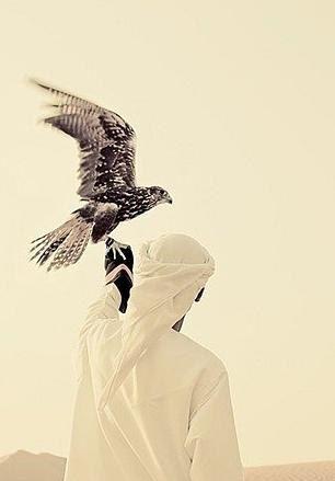 Arab Swag Wrath And The Dawn Arab Swag Arab Culture