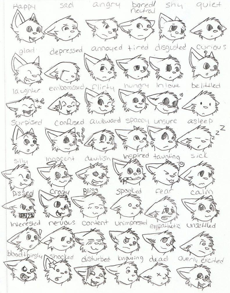 Cat Emotions Face Cat Face Drawing Warrior Cat Drawings Cartoon Cat Drawing