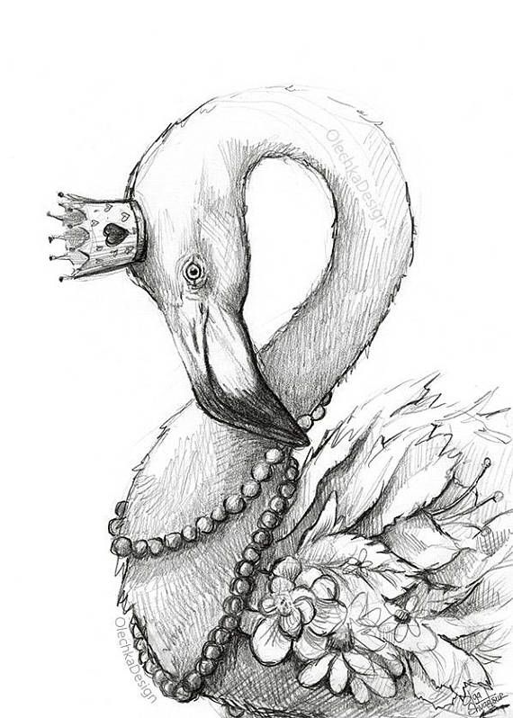 Whimsical Flamingo Drawing, Flamingo Art Print, Flamingo Portrait ...