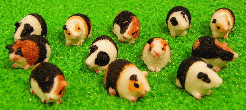 12th Scale Dolls House Assorted Guinea Pigs (12) DA015 | Hobbies | Streets Ahead
