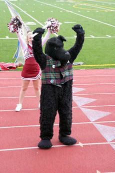 Image result for Scotty the Scottie Dog mascot