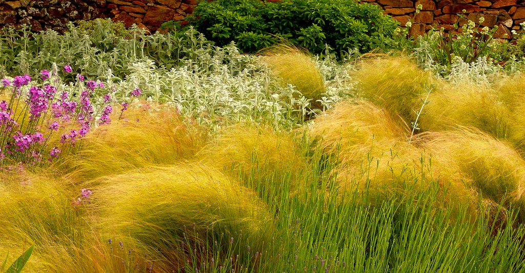 Jard n caceres mayo 2010 dise o y combinaciones for Plantas jardin mediterraneo