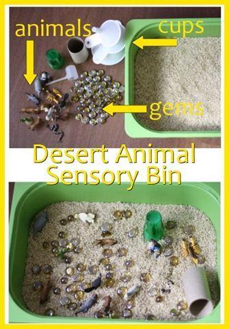 Desert Animal Sensory Bin