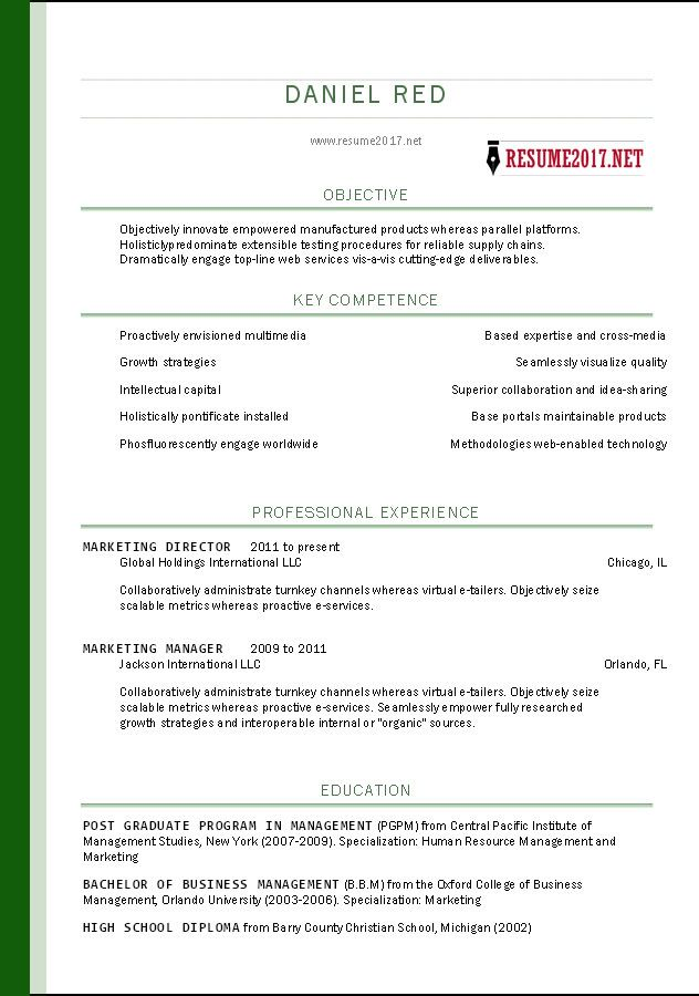 resume format 2017 template pinterest sample resume and resume