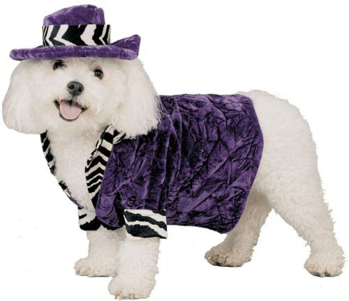 Pimp Daddy Dog Costume For X-small Dogs