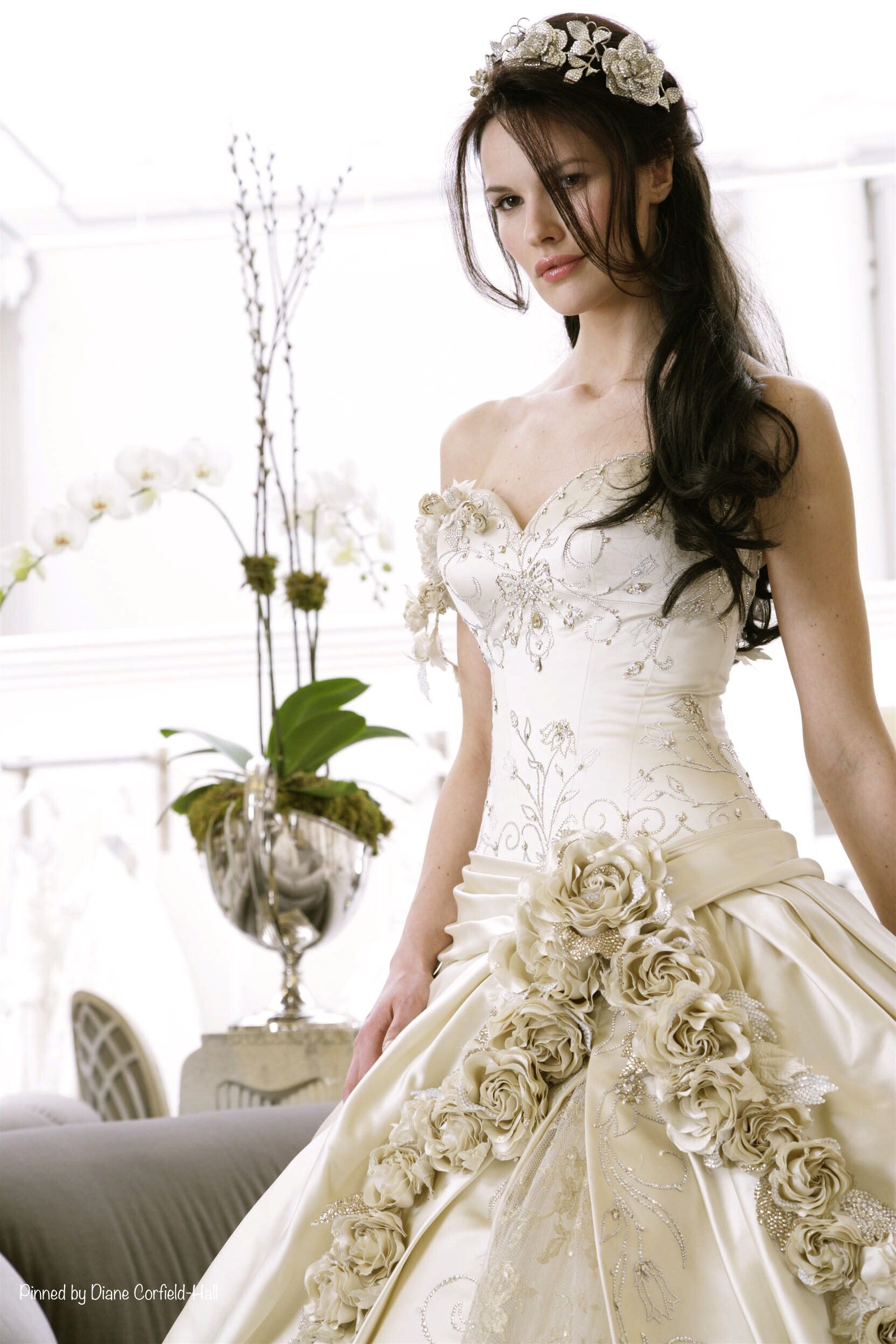 Most expensive wedding dress in the world  The most expensive dress ever by Pnina Tornai  SPARKLE u SHINE