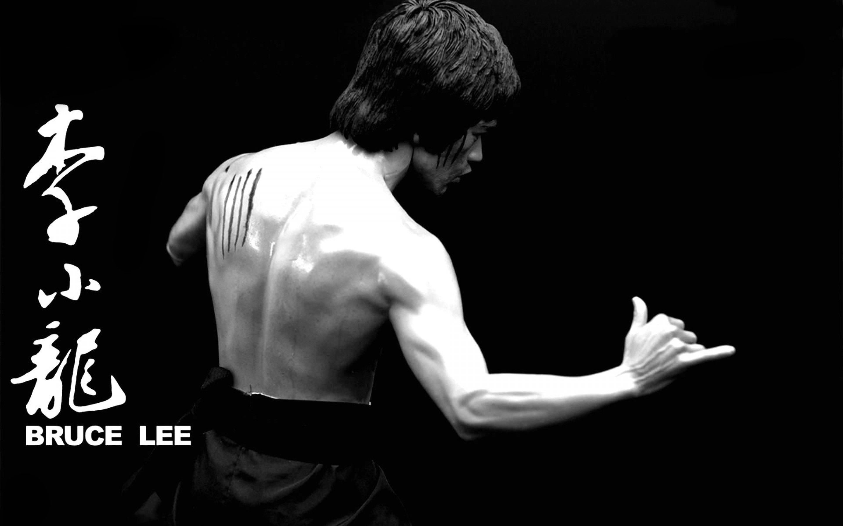 Bruce Lee HD Wallpaper for Android Free Download on