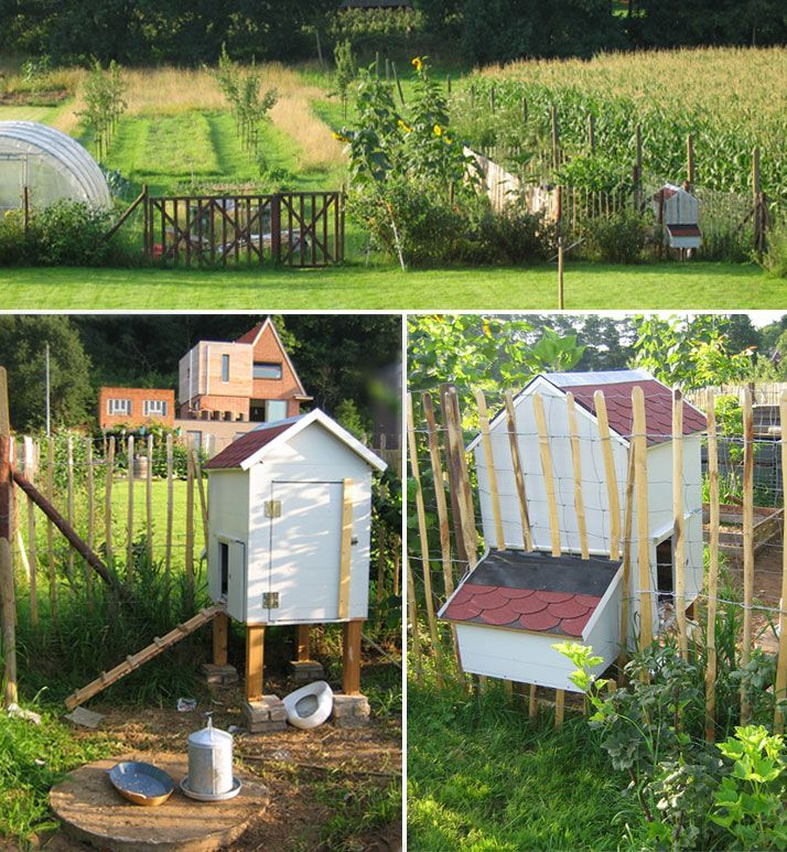 Wonderful Diy Recycled Chicken Coops: Our (diy) Chicken Coop Is An Important Part Of Our Garden