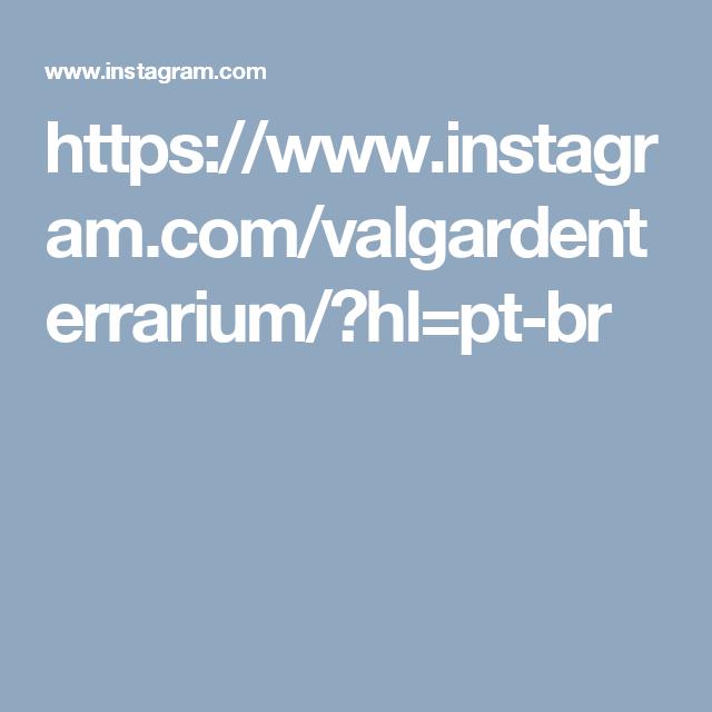https://www.instagram.com/valgardenterrarium/?hl=pt-br