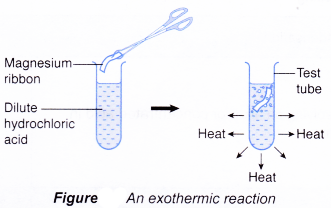 How Can Energy Be Changed In A Chemical Reaction With Images Exothermic Reaction Chemical Energy