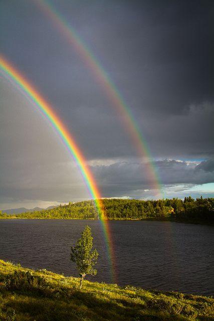 Double Pot of Gold | ©Trond Strømme  (Lake Nedre Djupetjønn, Såtefjell, Buskerud, Norway)