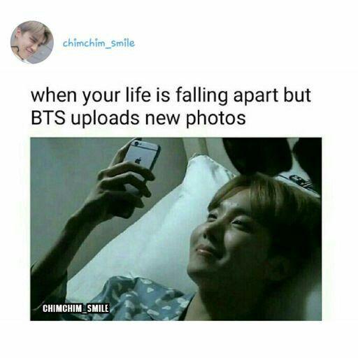 My Life Has Fallen Apart Because Of Those 7 Idiots Those 7 Perfect Idiots Pinterest Strawberrymurlk Bts Memes Bts Boys Memes
