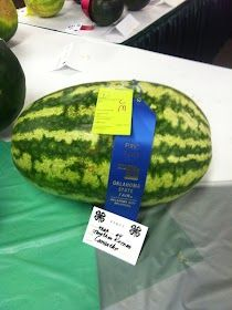 Watermelon, man!