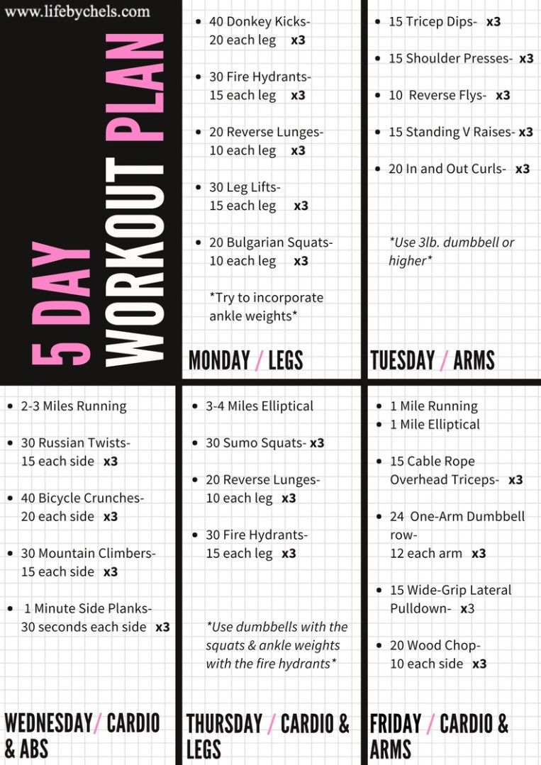 5 day workout plan