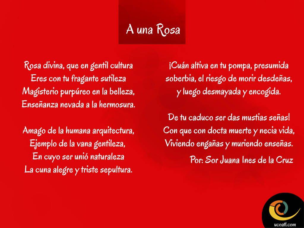 A Una Rosa Por Sor Juana Ines De La Cruz D Poemas Poemas
