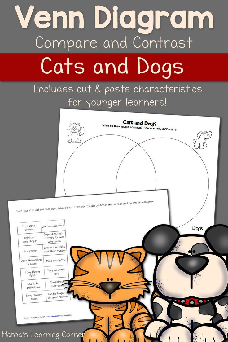 Cats and dogs venn diagram worksheet pinterest venn diagrams contrast and compare cats dogs with this venn diagram for your young learner ccuart Choice Image