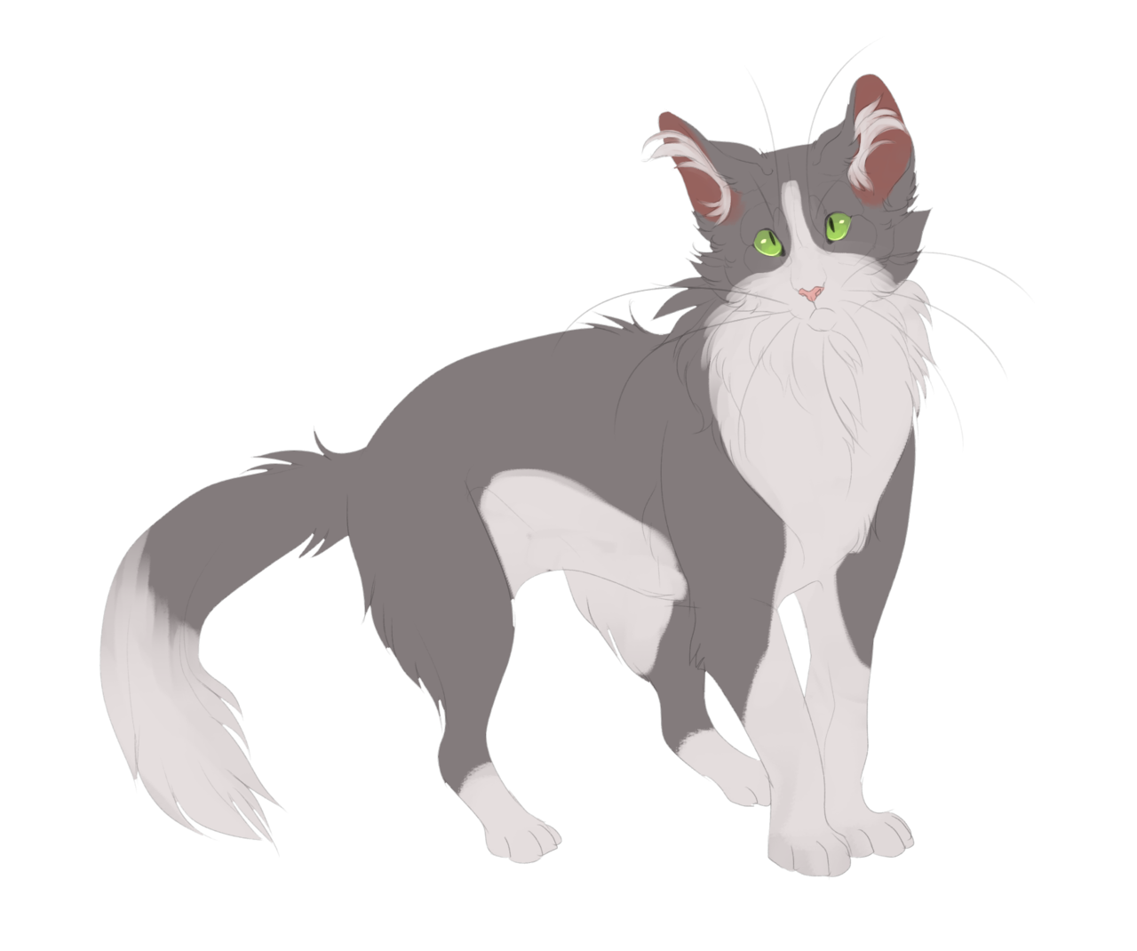 mousewhisker solid blue and white Cats, Warrior cats