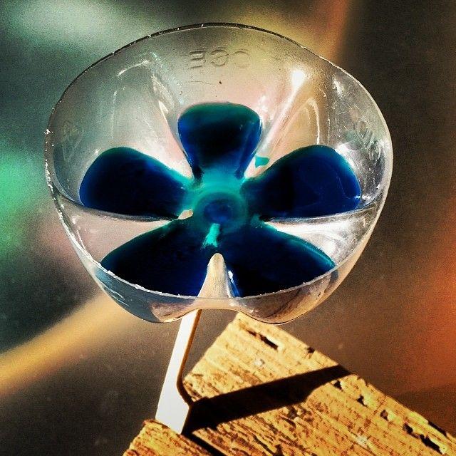#blaueblumen bloom balance, David Jones
