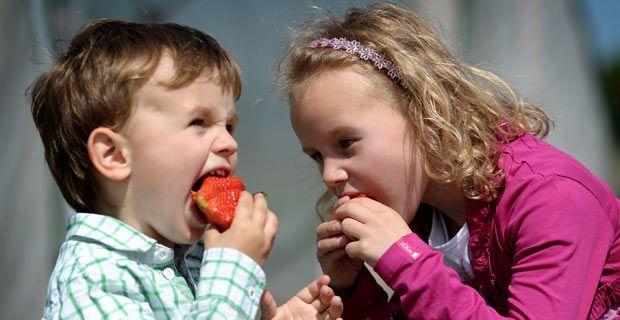 Día Mundial de la Alimentación 2013: se celebra hoy 16 de octubre