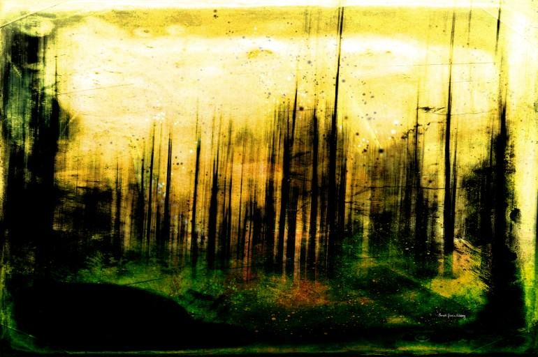 "Saatchi Art Artist Randi Grace Nilsberg; Photography, ""Out of Darkness"" #art"