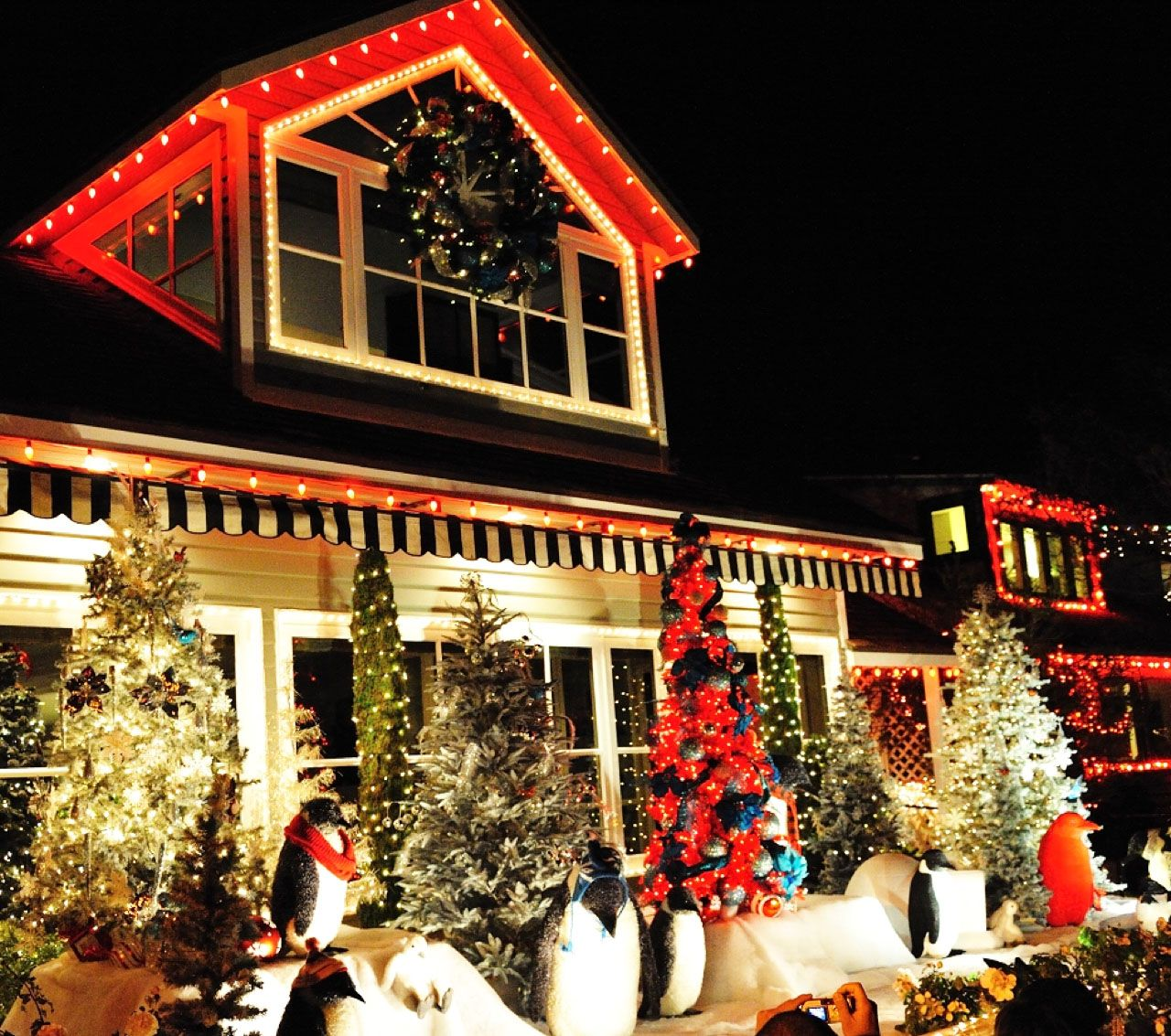 Newport Beach Christmas Lights Cruise.Checkout Christmasparadeboats Com For Tickets And
