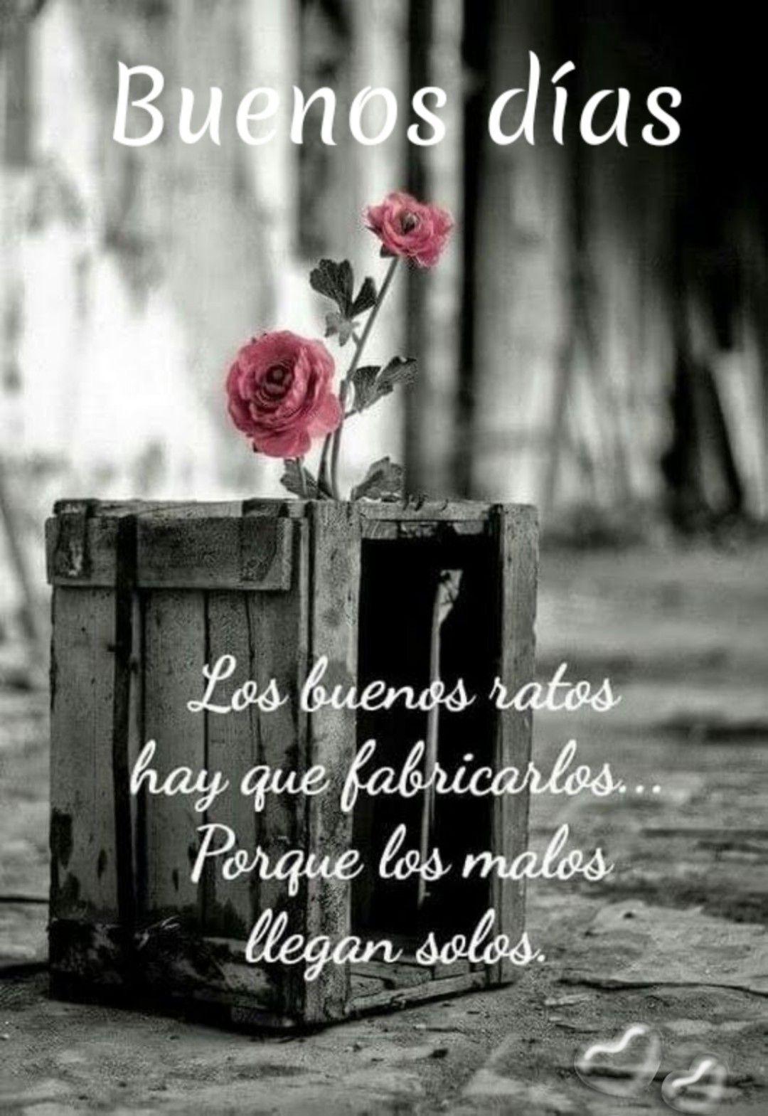 Frases Hermosas De Amor De Buenos Dias Para Celular En 2020