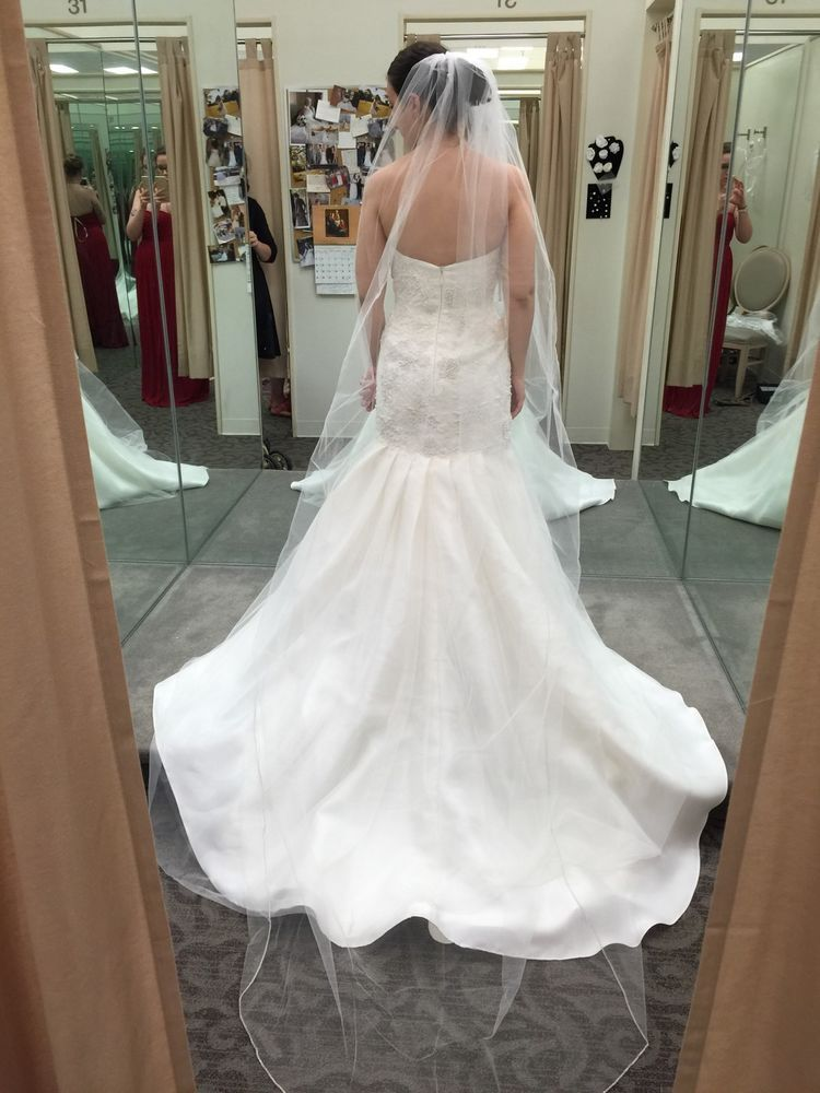 Vera Wang Wedding Dress Veil Trumpet Slip and Bridal Garment Bag ...