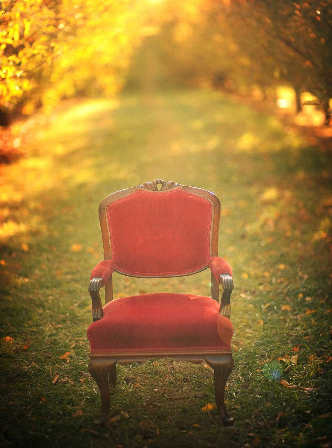 Red chair photography - Fall Photography Alice In Wonderland Fairy Tale Red Chair Woodland Print